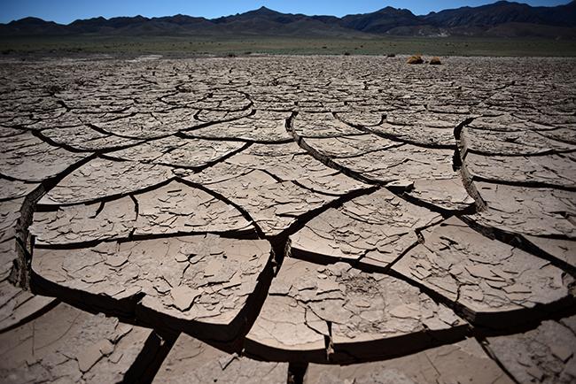 desert aride