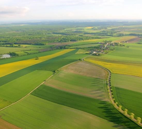 exploitations agricoles et politique agricole commune